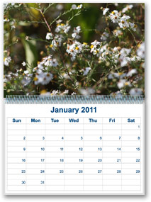 Personalized Wall Calendar from McNeil Printing